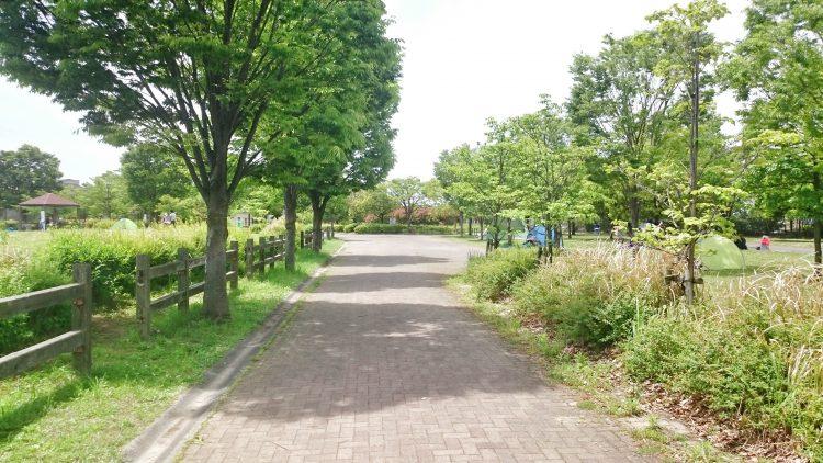 戸田川緑地公園内の路面